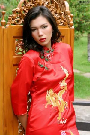 VOL.929 [TheBlackAlley/TBA黑巷] Wang Xiao Hong 古典旗袍高品质壁纸大图